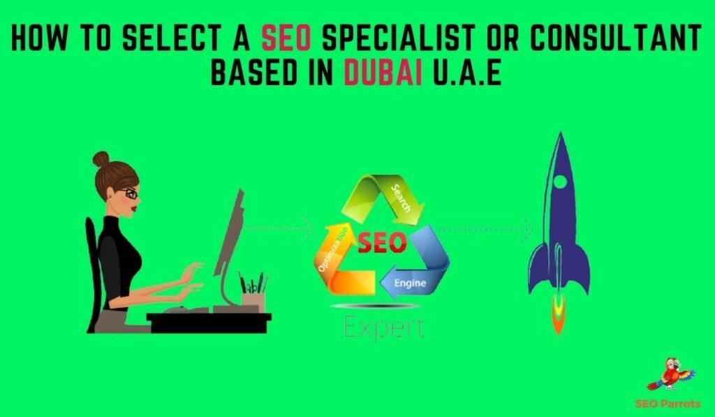 SEO Consultant in Dubai